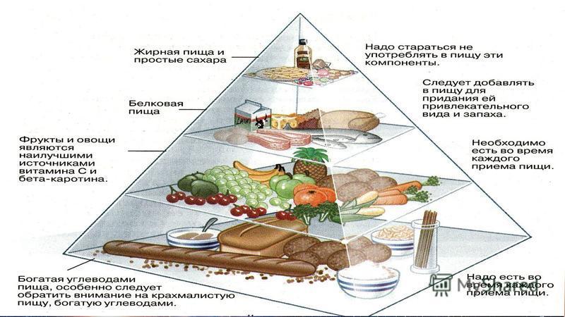 6. Основы рационального питания Великий русский ученый И. П. Павлов говорил, что « …Нормальная и полезная еда есть еда с аппетитом, еда с испытываемым наслаждением». Организм человека находится в тесной взаимосвязи с внешней средой, которая непрерывн