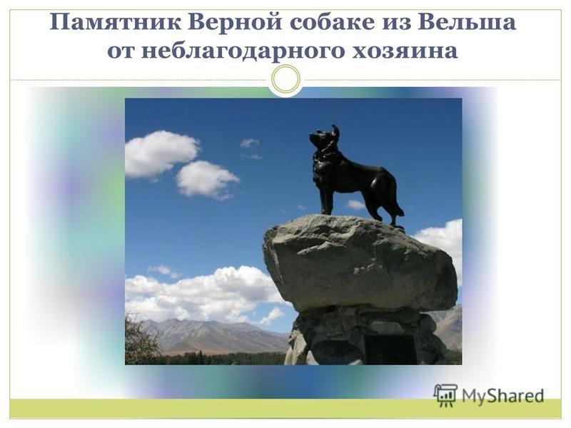 Памятник Верной собаке из Вельша от неблагодарного хозяина