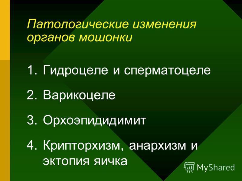 Патологические изменения органов мошонки 1. Гидроцеле и сперматоцеле 2. Варикоцеле 3. Орхоэпидидимит 4.Крипторхизм, анархизм и эктопия яичка