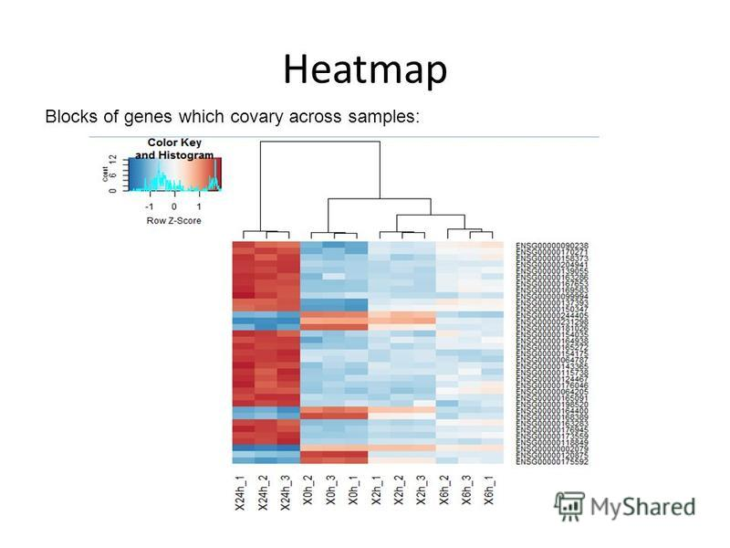 Heatmap Blocks of genes which covary across samples: