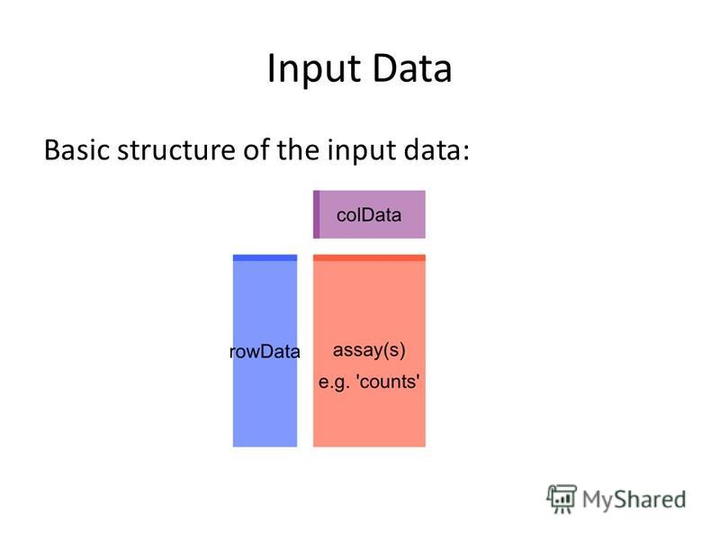 Input Data Basic structure of the input data: