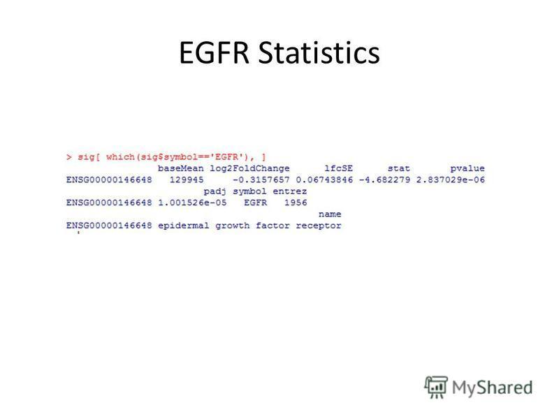 EGFR Statistics