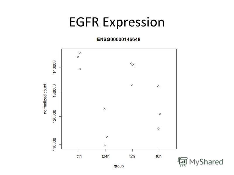 EGFR Expression