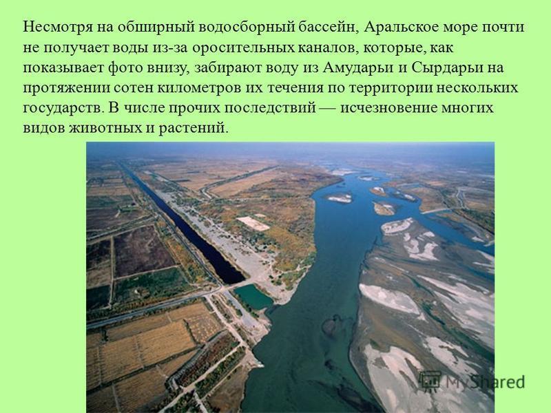 Несмотря на обширный водосборный бассейн, Аральское море почти не получает воды из-за оросительных каналов, которые, как показывает фото внизу, забирают воду из Амударьи и Сырдарьи на протяжении сотен километров их течения по территории нескольких го