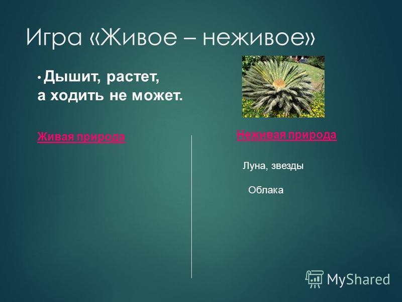 Игра «Живое – неживое» Живая природа Неживая природа Дышит, растет, а ходить не может. Луна, звезды Облака Растение