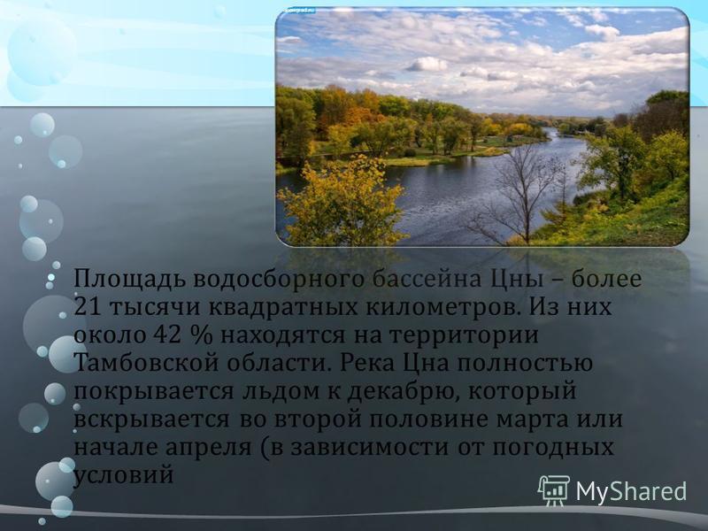 Площадь водосборного бассейна Цны – более 21 тысячи квадратных километров. Из них около 42 % находятся на территории Тамбовской области. Река Цна полностью покрывается льдом к декабрю, который вскрывается во второй половине марта или начале апреля (в