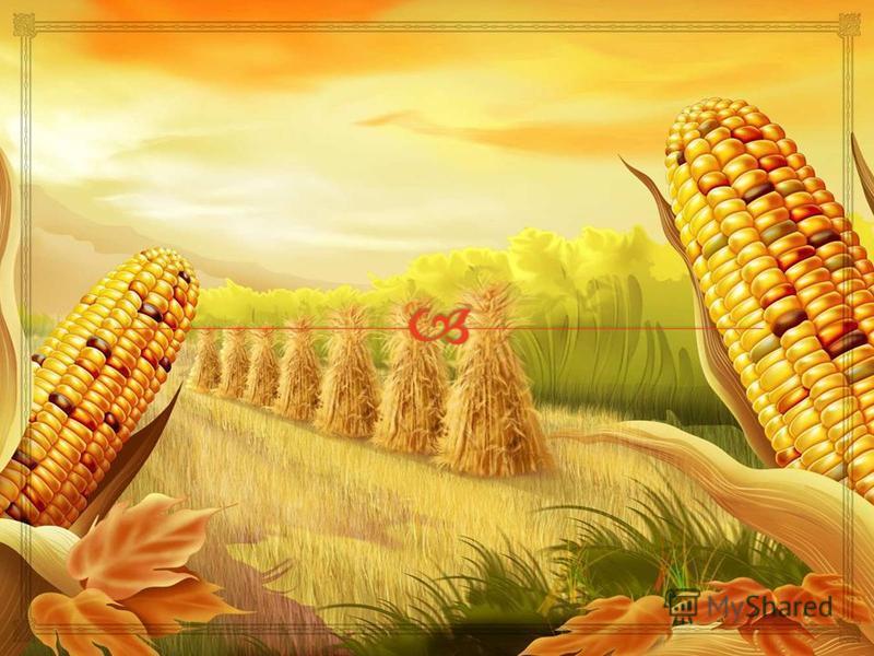 Виробництво біоетанолу з кукурудзи може бути менш сприятливим для клімату, якщо в процесі переробки сільськогосподарських культур в біопаливо використовуються викопні види палива, такі як вугілля чи нафта. Залежно від ефективності технологічних проце
