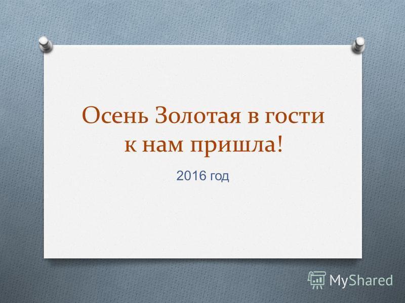 Осень Золотая в гости к нам пришла! 2016 год