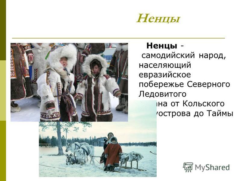 Ненцы Ненцы - самодийский народ, населяющий евразийское побережье Северного Ледовитого океана от Кольского полуострова до Таймы ра.