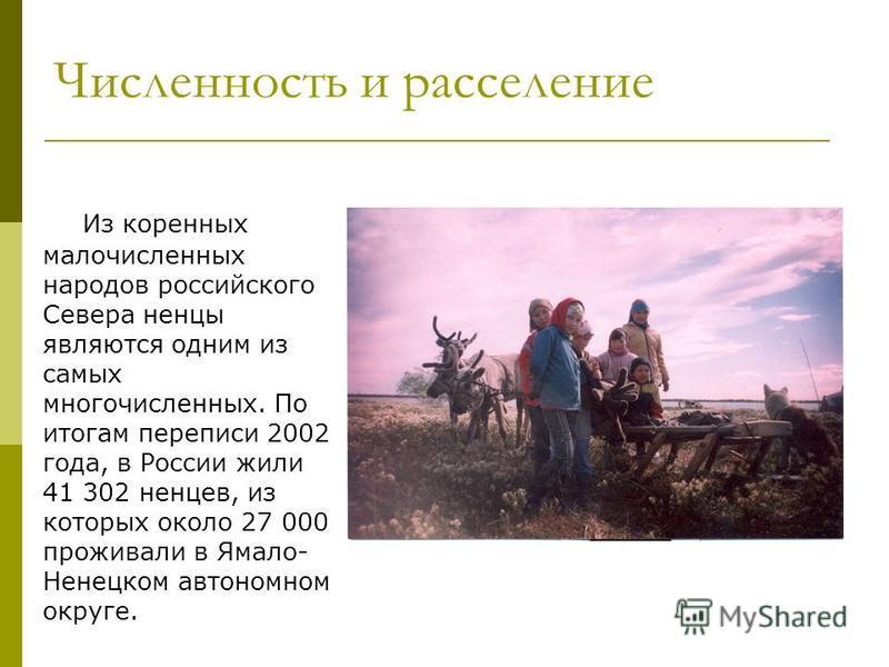 Численность и расселение Из коренных малочисленных народов российского Севера ненцы являются одним из самых многочисленных. По итогам переписи 2002 года, в России жили 41 302 ненцев, из которых около 27 000 проживали в Ямало- Ненецком автономном окру