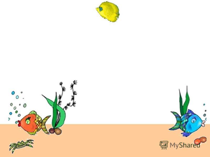 Вправи для очей В акваріумі Вчитель математики Іллінської ЗОШ І-ІІІ ступенів Цой І.Ф.