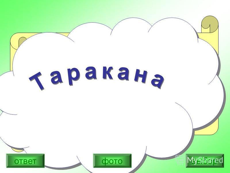 Вспомни, кого испугались персонажи сказки Корнея Чуковского. Он вбегает в трамвай, Все кричат: Ай- ай –ай! И бегом, кувырком, по домам, по углам: Помогите! Спасите! Помилуйте! 1) Крокодила 2) Бармалея 3) Таракана выбор ответ фото