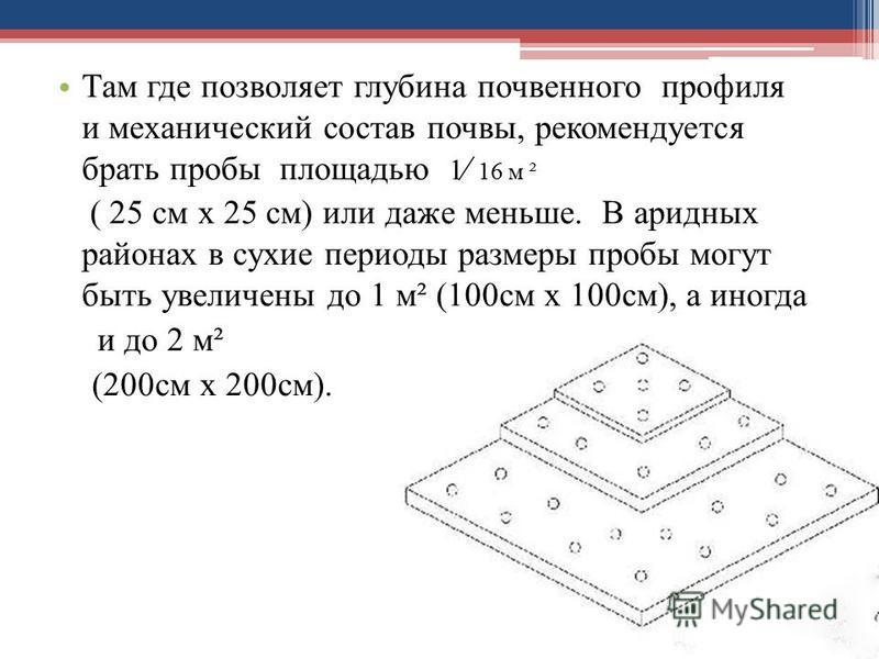 Там где позволяет глубина почвенного профиля и механический состав почвы, рекомендуется брать пробы площадью 1 16 м ² ( 25 см х 25 см) или даже меньше. В аридных районах в сухие периоды размеры пробы могут быть увеличены до 1 м² (100 см х 100 см), а