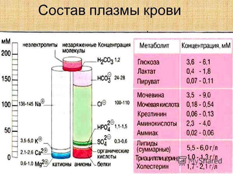 Состав плазмы крови