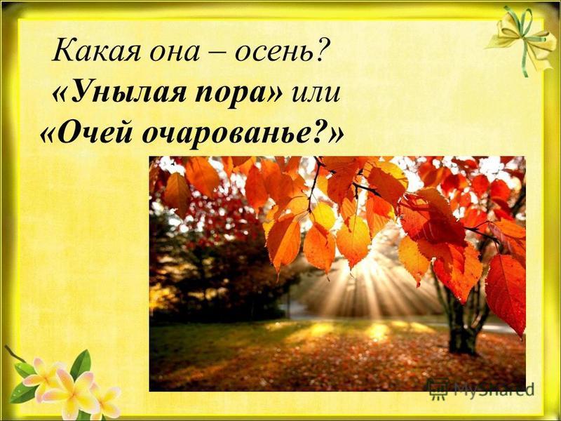 Какая она – осень? «Унылая пора» или «Очей очарованье?»