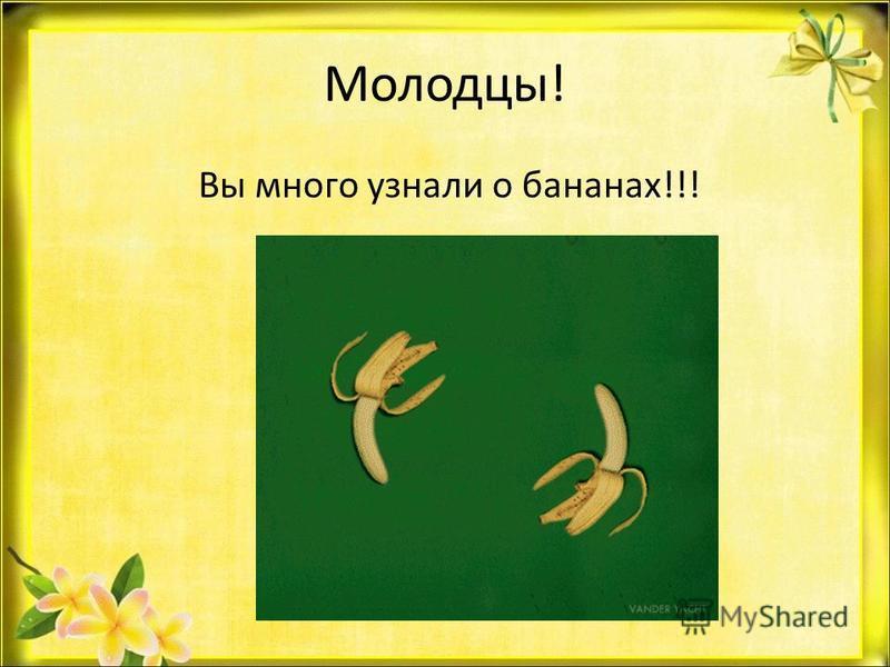 Молодцы! Вы много узнали о бананах!!!