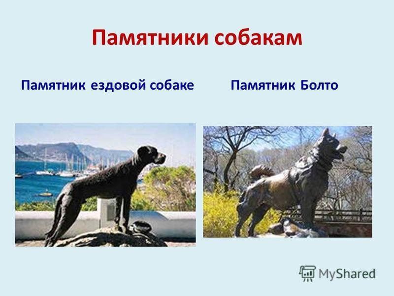 Памятники собакам Памятник ездовой собаке Памятник Болто