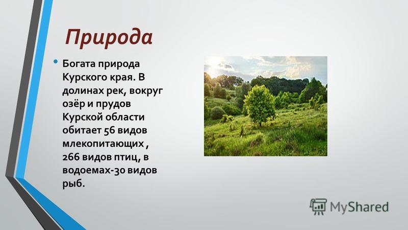 Природа Богата природа Курского края. В долинах рек, вокруг озёр и прудов Курской области обитает 56 видов млекопитающих, 266 видов птиц, в водоемах-30 видов рыб.
