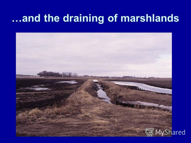 …and the draining of marshlands.