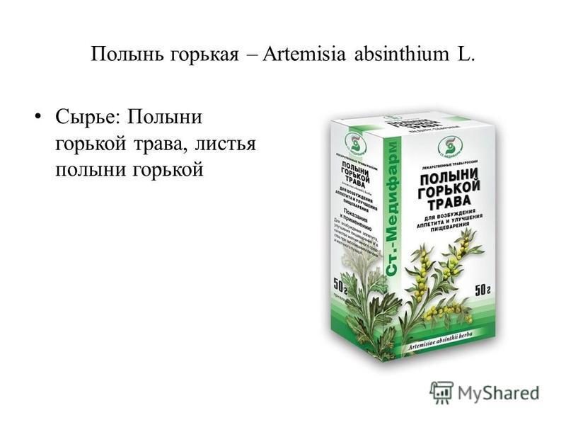Полынь горькая – Artemisia absinthium L. Сырье: Полыни горькой трава, листья полыни горькой