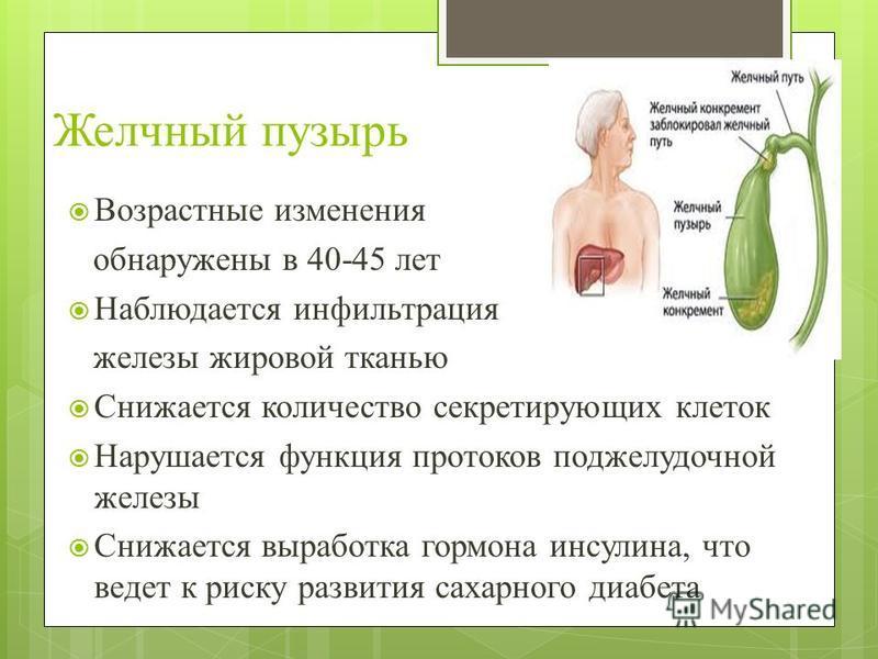 Желчный пузырь Возрастные изменения обнаружены в 40-45 лет Наблюдается инфильтрация железы жировой тканью Снижается количество секретирующих клеток Нарушается функция протоков поджелудочной железы Снижается выработка гормона инсулина, что ведет к рис