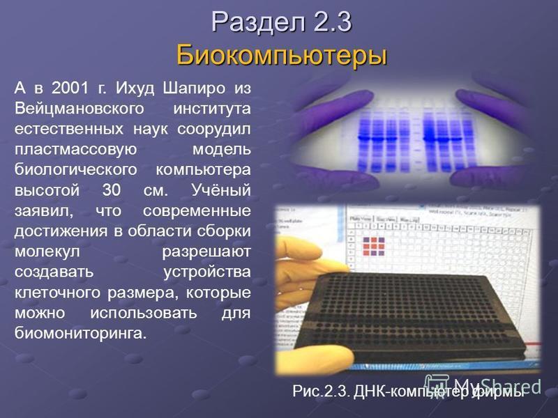 Раздел 2.3 Биокомпьютеры А в 2001 г. Ихуд Шапиро из Вейцмановского института естественных наук соорудил пластмассовую модель биологического компьютера высотой 30 см. Учёный заявил, что современные достижения в области сборки молекул разрешают создава