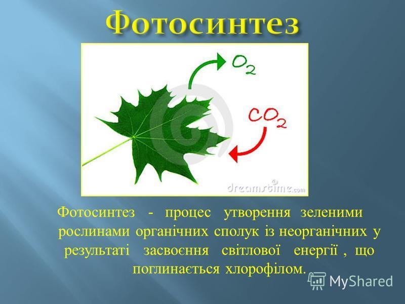 Фотосинтез - процес утворення зеленими рослинами органічних сполук із неорганічних у результаті засвоєння світлової енергії, що поглинається хлорофілом.
