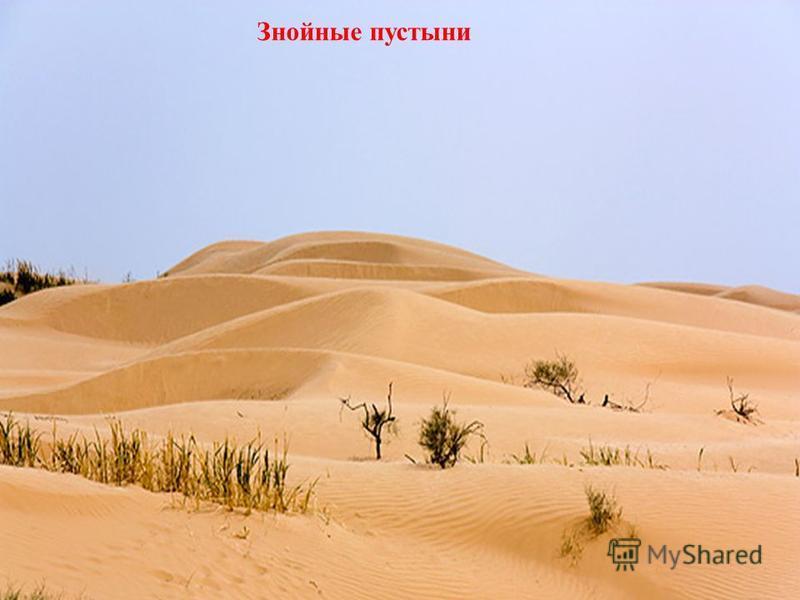 Знойные пустыни