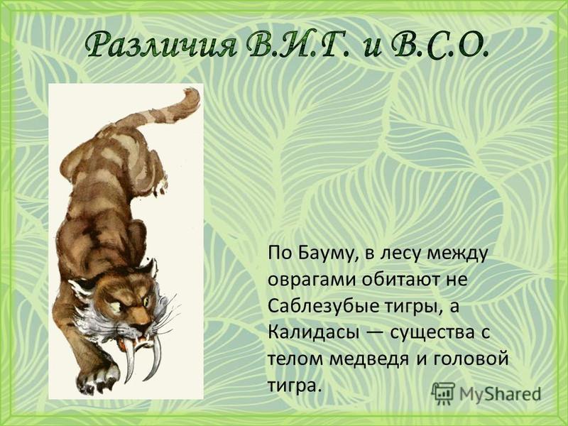 По Бауму, в лесу между оврагами обитают не Саблезубые тигры, а Калидасы существа с телом медведя и головой тигра.
