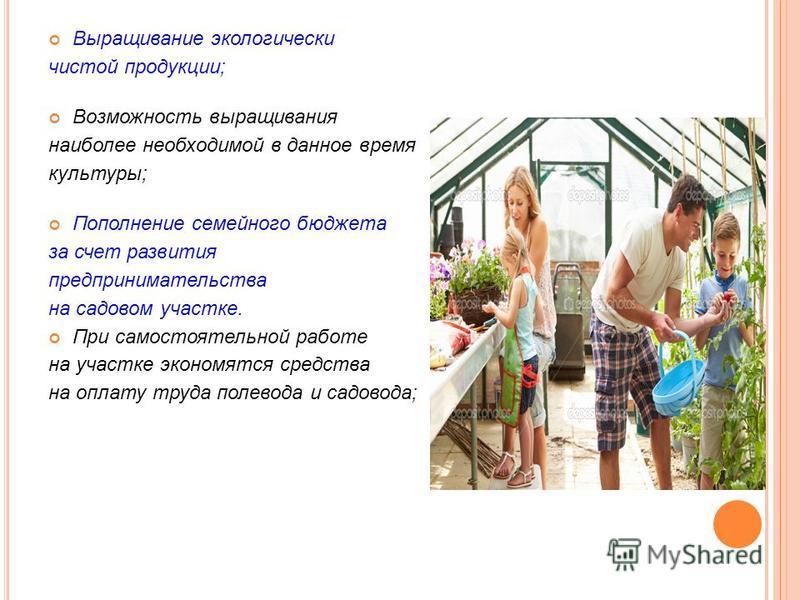 Выращивание экологически чистой продукции; Возможность выращивания наиболее необходимой в данное время культуры; Пополнение семейного бюджета за счет развития предпринимательства на садовом участке. При самостоятельной работе на участке экономятся ср