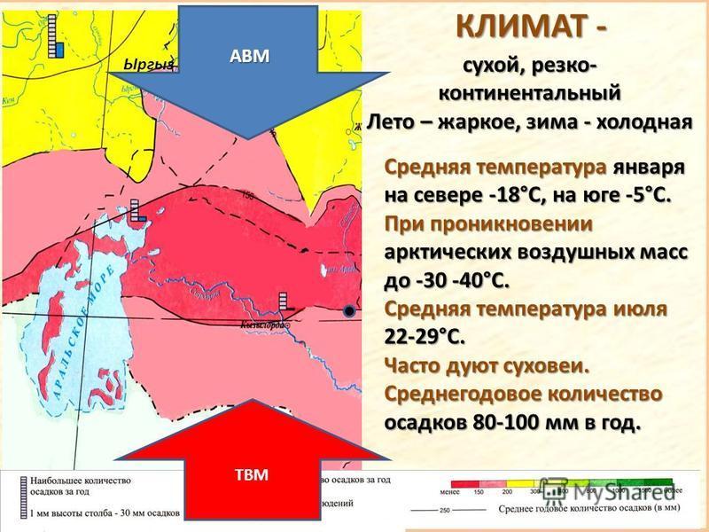 Ыргыз сухой, резко- континентальный Лето – жаркое, зима - холодная АВМ АВМ ТВМ КЛИМАТ - Средняя температура января на севере -18°С, на юге -5°С. При проникновении арктических воздушных масс до -30 -40°С. Средняя температура июля 22-29°С. Часто дуют с