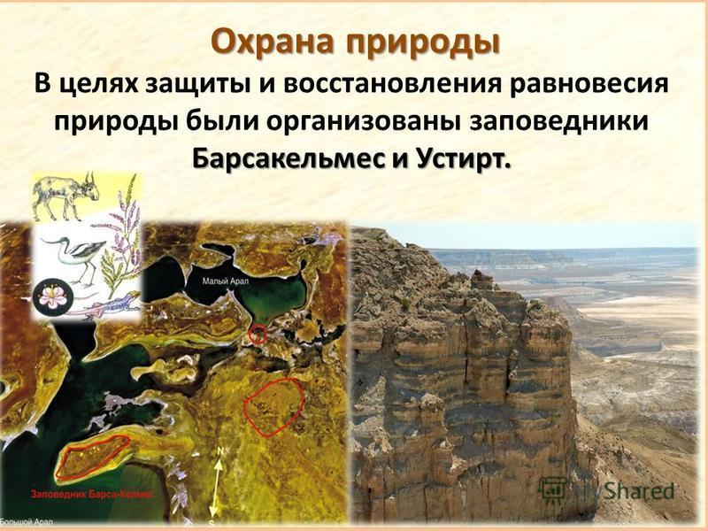 Охрана природы Барсакельмес и Устирт. В целях защиты и восстановления равновесия природы были организованы заповедники Барсакельмес и Устирт.