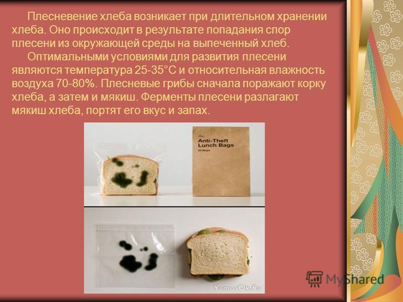 Более приемлемый способ замедления процессов очерствения упаковка хлеба в специальные виды бумаги, полимерной пленки, в том числе перфорированной и термоусадочной.