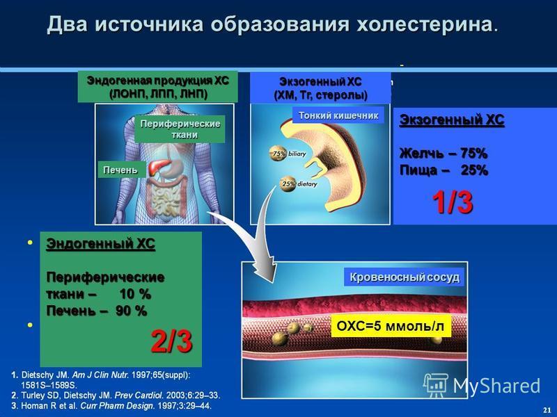 Два источника образования холестерина. Два источника образования холестерина. Эндогенная продукция ХС (ЛОНП, ЛПП, ЛНП) Экзогеный ХС (ХМ, Тг, стеролы) Кровеносный сосуд Тонкий кишечник Экзогеный ХС Желчь – 75% Пища – 25% Эндогеный ХС Периферические тк