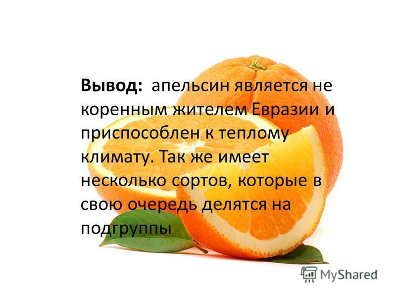 Вывод: апельсин является не коренным жителем Евразии и приспособлен к теплому климату. Так же имеет несколько сортов, которые в свою очередь делятся на подгруппы