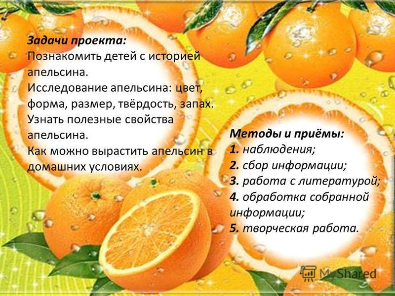 Методы и приёмы: 1. наблюдения; 2. сбор информации; 3. работа с литературой; 4. обработка собранной информации; 5. творческая работа. Задачи проекта: Познакомить детей с историей апельсина. Исследование апельсина: цвет, форма, размер, твёрдость, запа