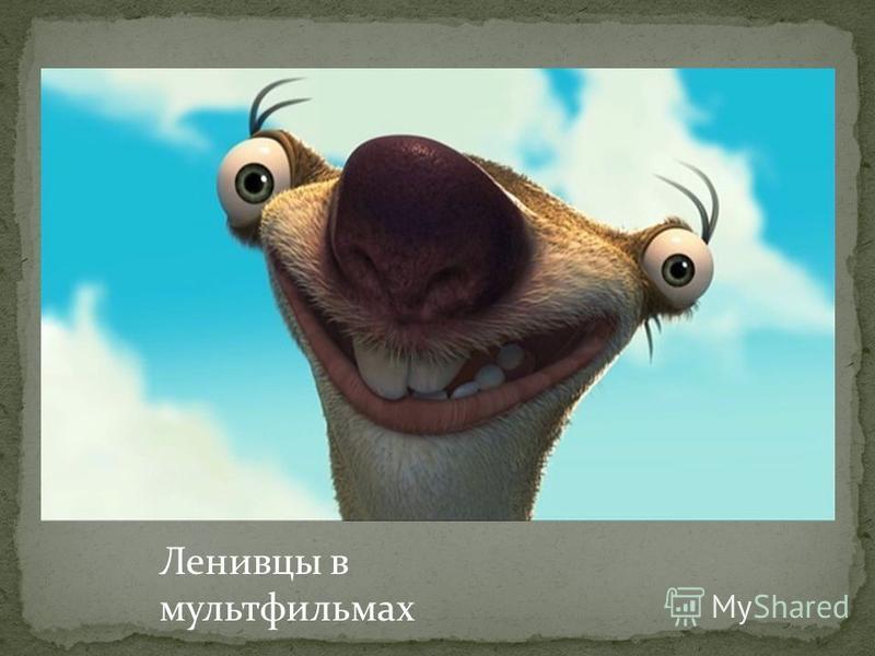 Ленивцы в мультфильмах