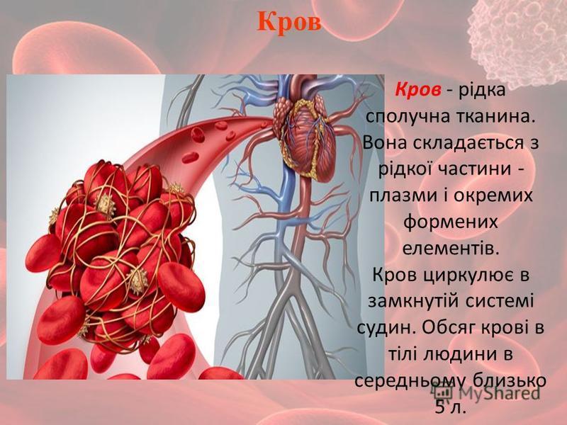 Кров Кров - рідка сполучна тканина. Вона складається з рідкої частини - плазми і окремих формених елементів. Кров циркулює в замкнутій системі судин. Обсяг крові в тілі людини в середньому близько 5 л.