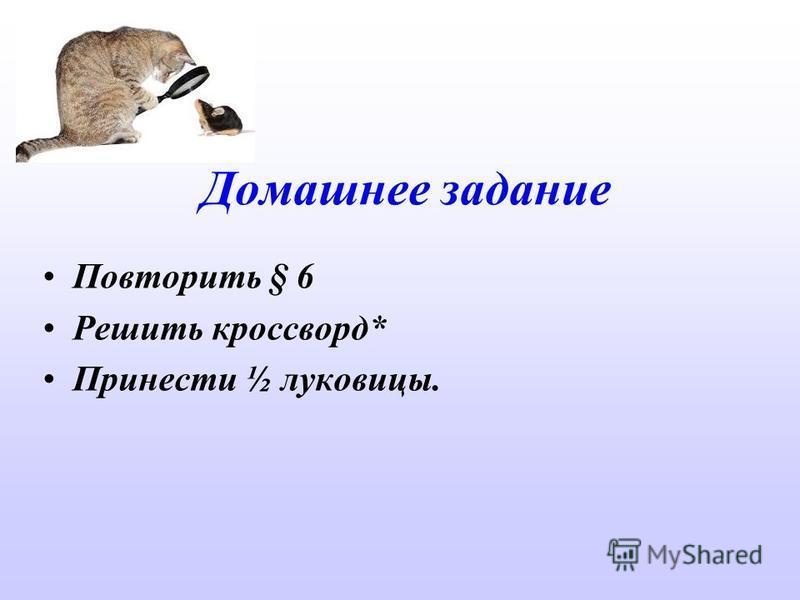 Домашнее задание Повторить § 6 Решить кроссворд* Принести ½ луковицы.