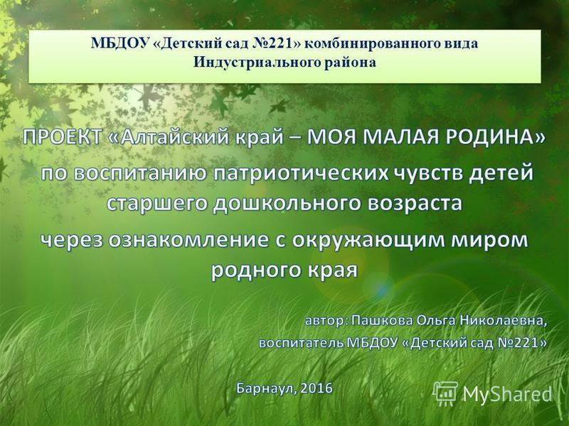 МБДОУ «Детский сад 221» комбинированного вида Индустриального района
