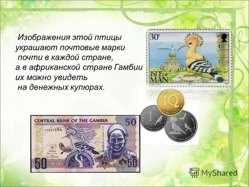 Изображения этой птицы украшают почтовые марки почти в каждой стране, а в африканской стране Гамбии их можно увидеть на денежных купюрах.