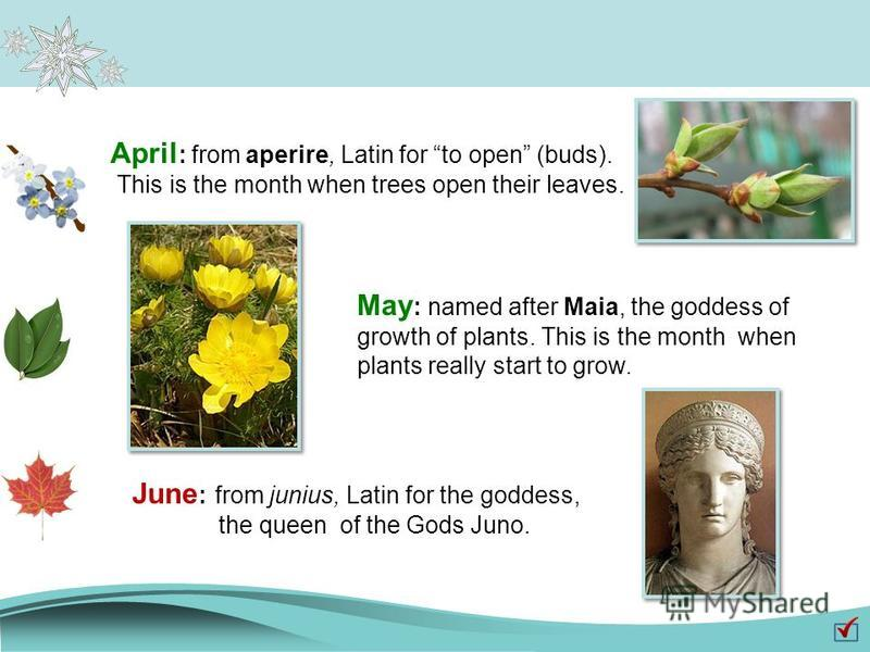 April : from aperire, Latin for to open (buds). This is the month when trees open their leaves. May : named after Maia, the goddess of growth of plants. This is the month when plants really start to grow. June : from junius, Latin for the goddess, th