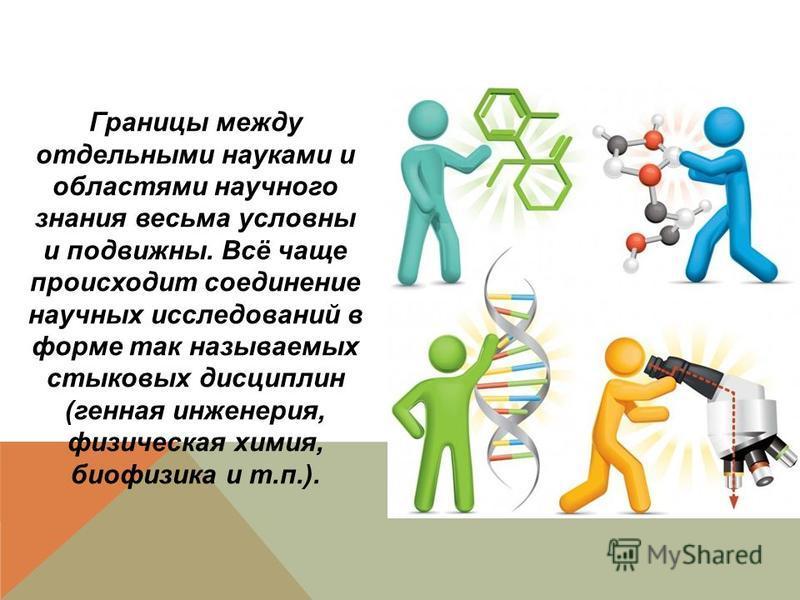 Границы между отдельными науками и областями научного знания весьма условны и подвижны. Всё чаще происходит соединение научных исследований в форме так называемых стыковых дисциплин (генная инженерия, физическая химия, биофизика и т.п.).