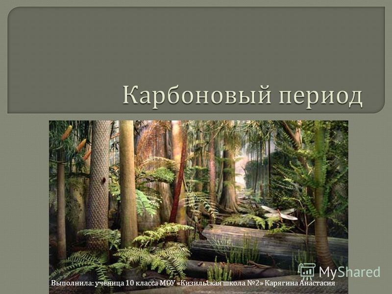 Выполнила : ученица 10 класса МОУ « Кизильская школа 2» Карягина Анастасия