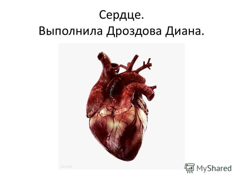 Сердце. Выполнила Дроздова Диана.