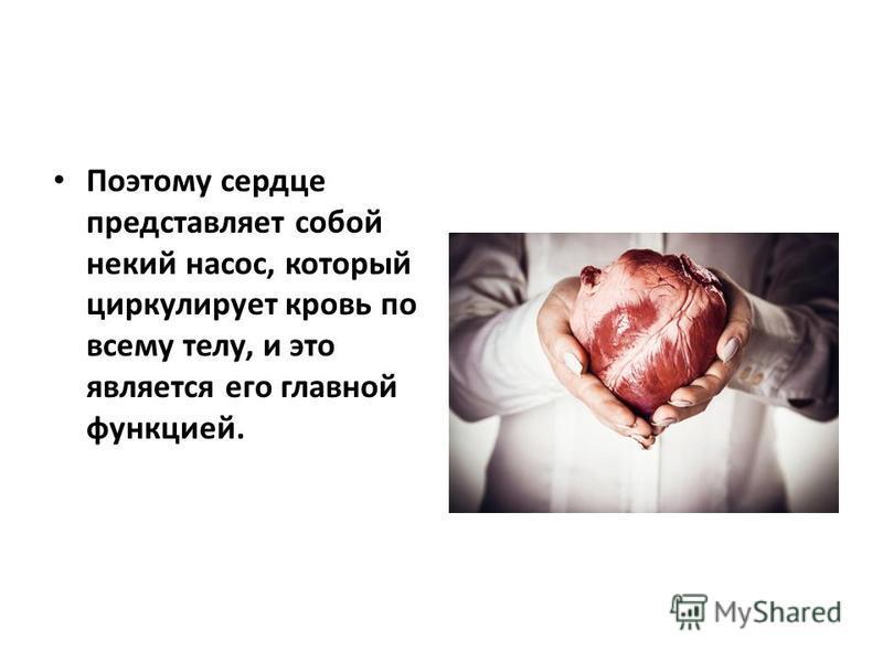 Поэтому сердце представляет собой некий насос, который циркулирует кровь по всему телу, и это является его главной функцией.