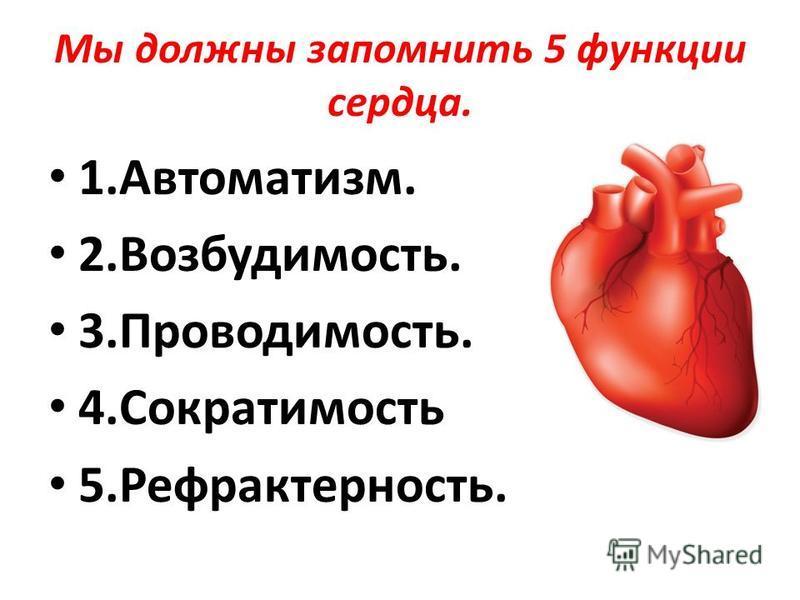 Мы должны запомнить 5 функции сердца. 1.Автоматизм. 2.Возбудимость. 3.Проводимость. 4. Сократимость 5.Рефрактерность.
