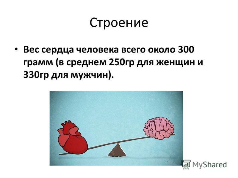 Строение Вес сердца человека всего около 300 грамм (в среднем 250 гр для женщин и 330 гр для мужчин).
