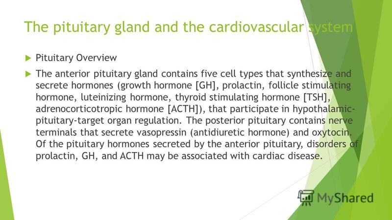 The pituitary gland and the cardiovascular system Pituitary Overview The anterior pituitary gland contains five cell types that synthesize and secrete hormones (growth hormone [GH], prolactin, follicle stimulating hormone, luteinizing hormone, thyroi