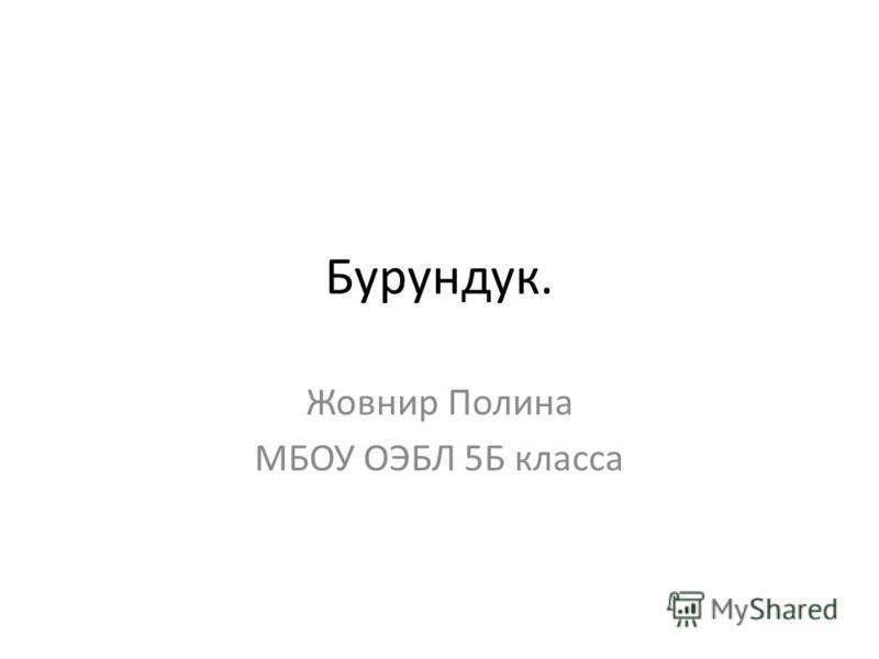 Бурундук. Жовнир Полина МБОУ ОЭБЛ 5Б класса